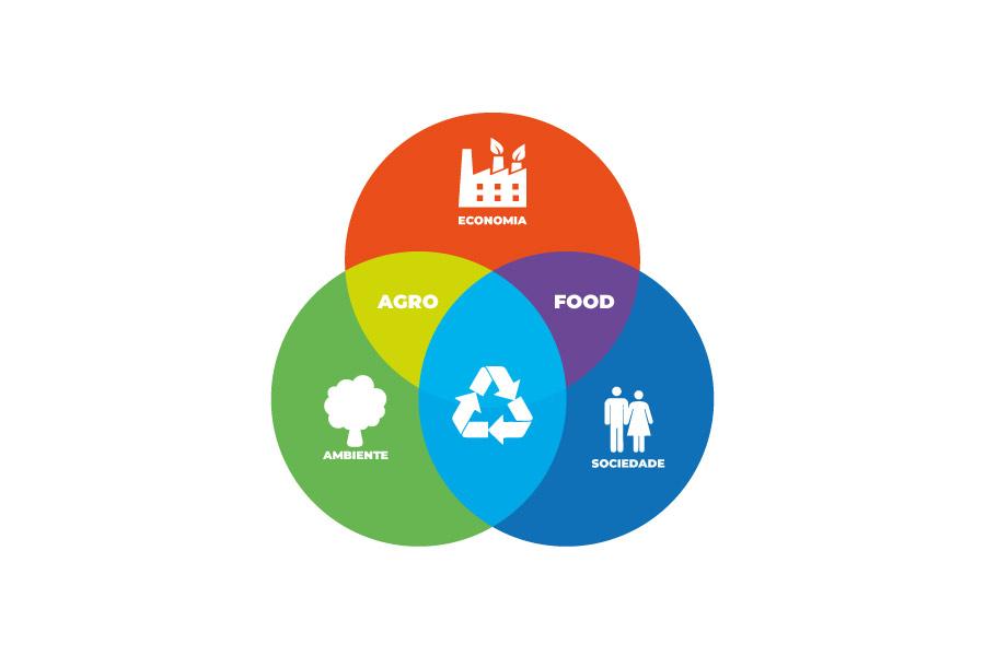 Conheça quais são os tripés da sustentabilidade empresarial